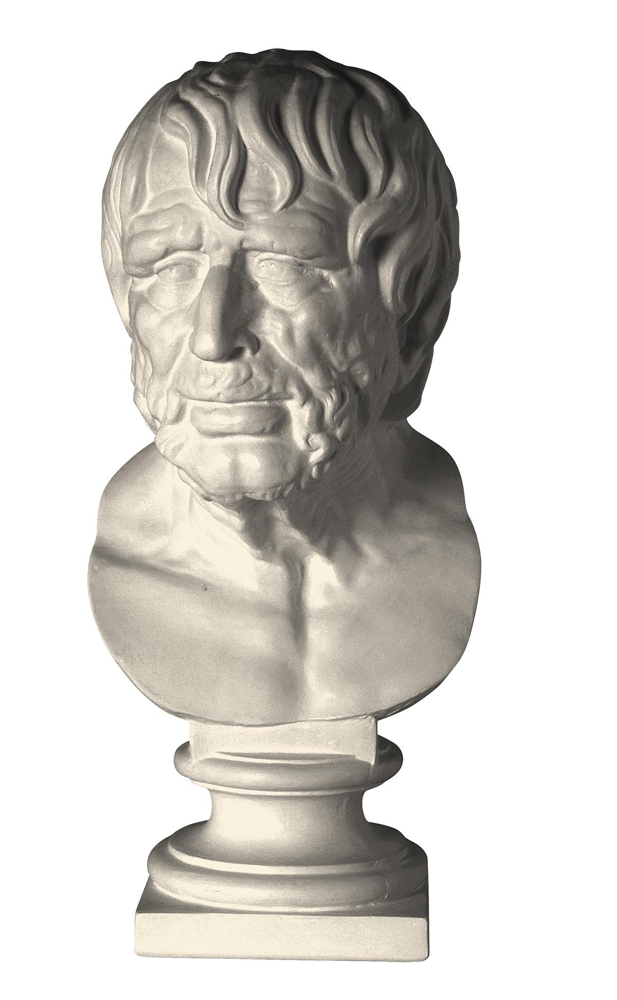 Testa dello pseudo Seneca (copia in gesso)