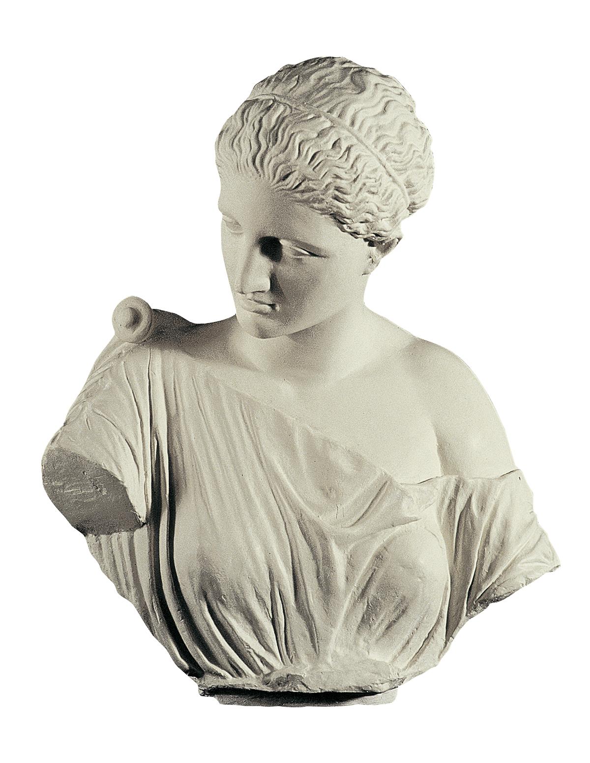 Presunta Artemide di Gabi, particolare del busto (copia in gesso)