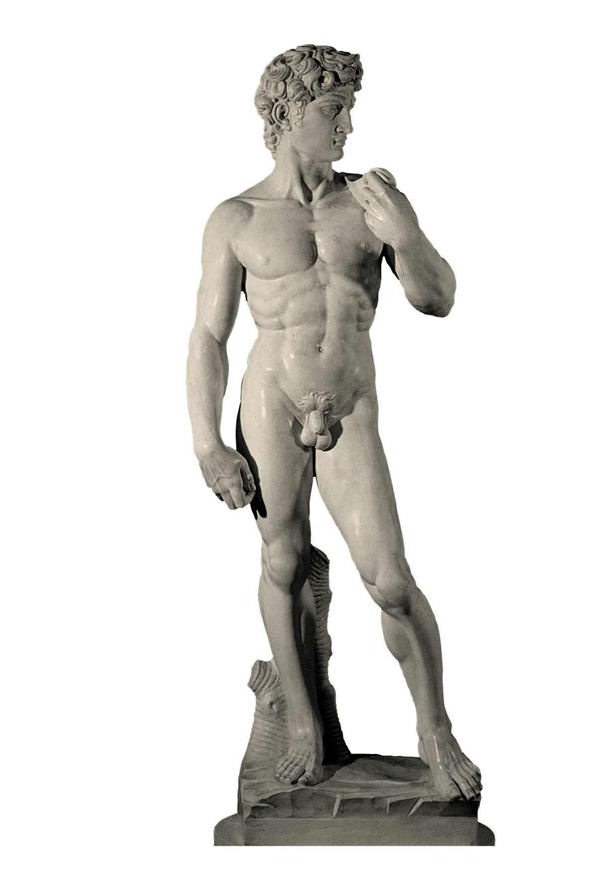 David di Michelangelo (copia ridotta in gesso)
